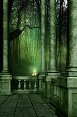 The Green Woods