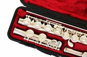 picture of flute  - Flute in case close up - JPG