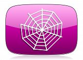 image of spider web  - spider web violet icon  original modern design for web and mobile app on white background with reflection  - JPG