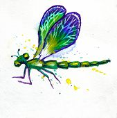 foto of dragonflies  - Hand drawn greeting background with beautiful watercolor flying green dragonfly - JPG
