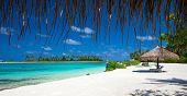 Постер, плакат: sea in Maldives tropical beach in Maldives with blue lagoon