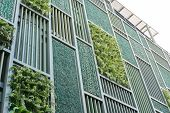 Green Facade, Vertical Garden In Architecture. Ecological Building. Green Architecture poster