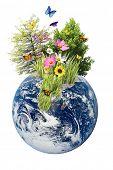 Постер, плакат: Природа растущие из изолированных земли