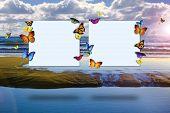 Постер, плакат: Бабочки холдинг пустых карточек в передней части красивый пляж