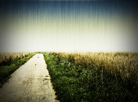 picture of dirt road  - Aged photo of a dirt road - JPG