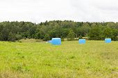 Packed In Blue Cellophane Dry Straw On The Field, Used To Feed Animals In Winter, Summer Landscape poster