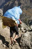 stock photo of sherpa  - Annapurna - JPG