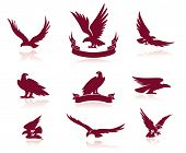 picture of silhouette  - Eagle Silhouettes Set - JPG