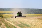 Harvesting Wheat On A Harvester On A Summer Day. Agriculture poster