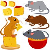 A colorful and cute vector collection of Rat Mouse and Cheese isolated on white