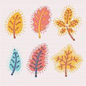 Vector Cartoon Illustration Of Fallen Autumn Leaves Set. Red, Yellow Oak, Chestnut, Espe. Modern Con poster