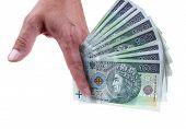 Polish Money poster