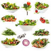 Collection of salads, isolated on white.  Includes green salad, garden salad, greek salad, chicken s