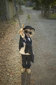 stock photo of zorro  - Young boy wearing a Zorro costume - JPG