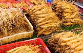 image of ginseng  - Ginseng for sell in food market - JPG