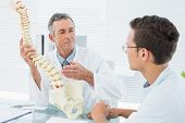 pic of vertebrae  - Male doctor explaining the spine to a patient in medical office - JPG