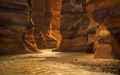picture of walking dead  - River canyon of Wadi Mujib in amazing golden light colors - JPG