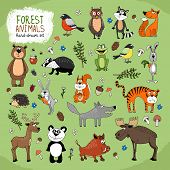 image of badger  - Forest Animals large set hand - JPG