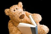 picture of teddy-bear  - teddy bear with glasses reading a book by himself - JPG