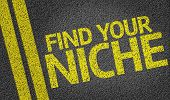 picture of differential  - Find your Niche written on the road - JPG
