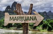 stock photo of marijuana cigarette  - Marijuana wooden sign with a forest background  - JPG