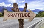 image of humility  - Gratitude wooden sign on a beautiful day - JPG