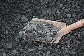 picture of power-shovel  - Loading shovel coal in the mine nature - JPG