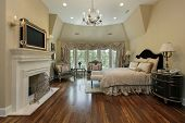 pic of master bedroom  - Master bedroom in luxury home with fireplace - JPG