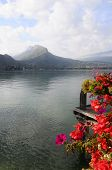 picture of annecy  - Landscape of Annecy lake and flowers in Savoy France - JPG
