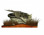 stock photo of plinth  - 3D Digital render of a sleeping dragon lying on a rock surrounded by long grass - JPG