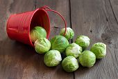 foto of brussels sprouts  - Brussels sprouts in a bucket on an old wooden table - JPG