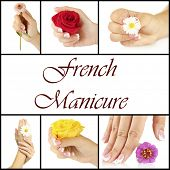 stock photo of french manicure  - Hands with french manicure and flower isolated on white in collage - JPG