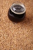 foto of malt  - Snifter glass with black stout beer standing over malted barley grains - JPG