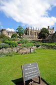 pic of church-of-england  - View of Christ Church college and Cathedral seen from the memorial gardens Oxford Oxfordshire England UK Western Europe - JPG