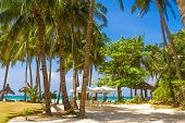 stock photo of beachfront  - tropical beach with palm trees and beach beds - JPG