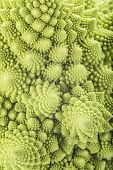 foto of romanesco  - Fresh and raw romanesco broccoli vegetable texture - JPG