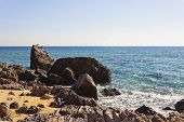 picture of shoreline  - Seascape with rocks in the shoreline of the beach and some birds over the rocks in summer - JPG