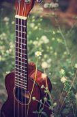 picture of ukulele  - Ukulele processed in vintage style - JPG