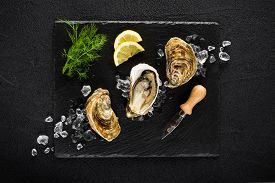 stock photo of shell-fishes  - Fresh oysters on a black stone plate top view - JPG