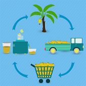 pic of production  - Banana juice production steps - JPG