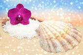 pic of mollusca  - Orchid and seashell with sea salt on a sparkling bokeh sandy beach - JPG