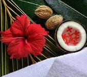 Постер, плакат: Спа красоты экзотические тропические цветы кокосы белые полотенца