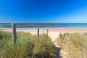 Ile de Rée- Beach exit with grass sand and sea at the horizon poster