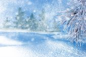 Winter Landscape With Snow. Christmas Background With Fir Branch And Christmas Ball.merry Christmas poster