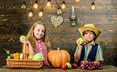 Fall Harvest Holiday. Elementary School Fall Festival Idea. Celebrate Harvest Festival. Kids Girl Bo poster