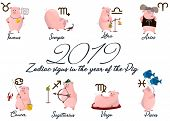 2019 Set Of Cute Cartoon Zodiac Pig. Vector Illustration Zodiacal Symbols: Aries, Taurus, Gemini, Ca poster
