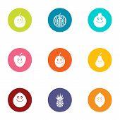 Pomegranate Icons Set. Flat Set Of 9 Pomegranate Icons For Web Isolated On White Background poster