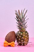 Summer Composition From Pineapple And Coconut. Hawaiian Ananas And Cocos On Pink Background. Summer  poster
