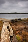 pic of festering  - Wooden road lead to a resting place with a bench and large lake in a marsh - JPG