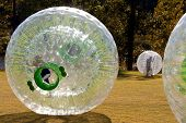 Kids Roll Around Inside Zorbs